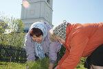 В рамках общероссийской акции Лес Победы 29 апреля и 14 мая на территории храма Преображения Господня в поселке Рылеево было высажено около 50 саженцев деревьев хвойных пород