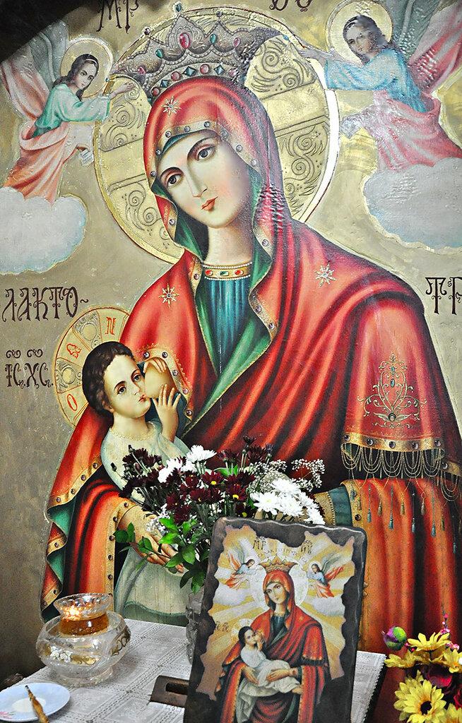 """Чудотворная икона """"Млекопитательница"""" в нижнем пещерном храме монастыря Герасима Иорданского"""