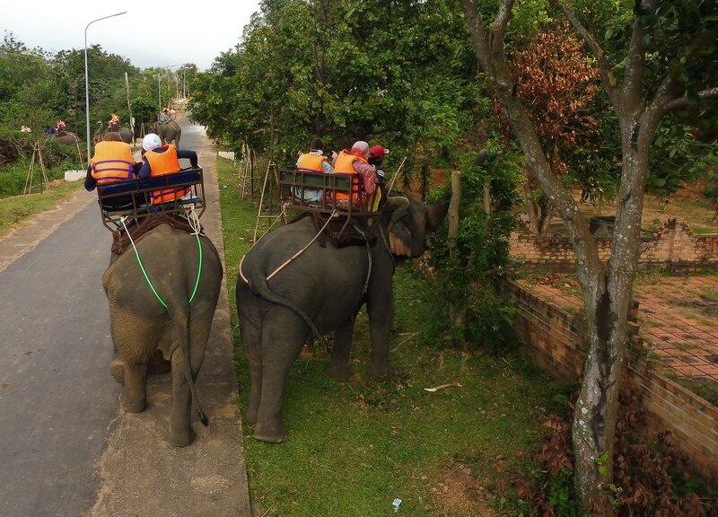 Слон решил покушать