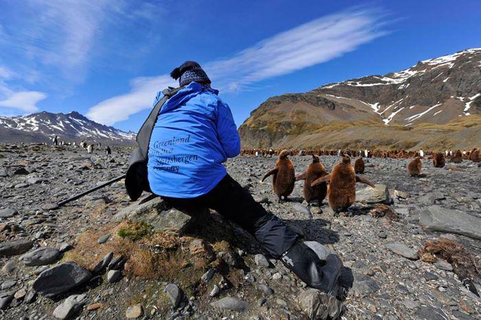 Фотографии четырех сезонов в самых захватывающих и красивых круизах мира