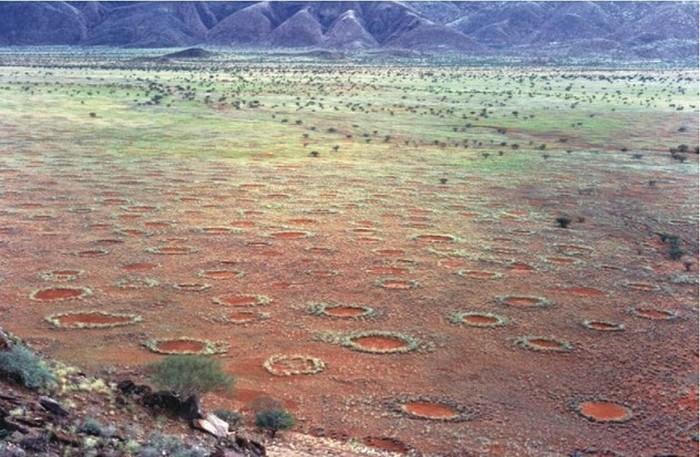 1. Круги фей На территории Намибской пустыни можно повстречать множество равномерно расположенных кр
