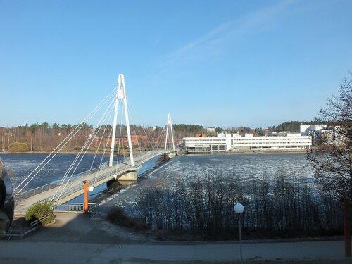 37_Вантовый мост.JPG