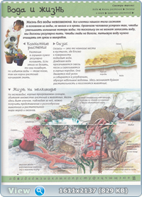 Иллюстрированная энциклопедия для любознательных (2004) PDF