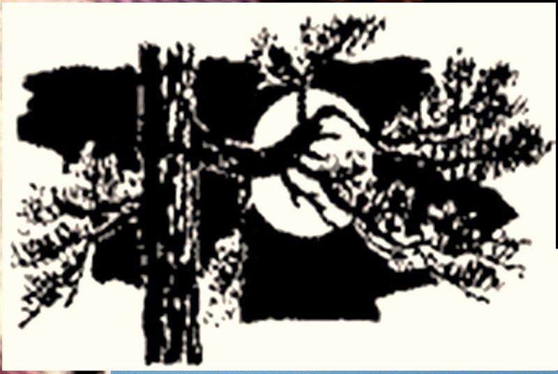 Иллюстрация к книге В.К.Арсеньева Дерсу Узала (23).jpg