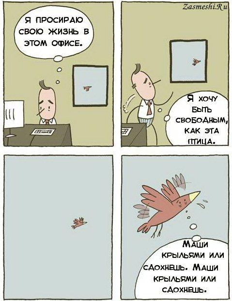 Маши крыльями_zasmeshi.ru_.jpg
