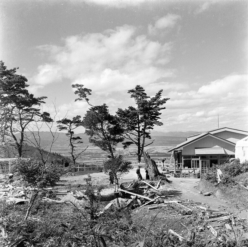 House on a Hill & Trees - 1950s Japan