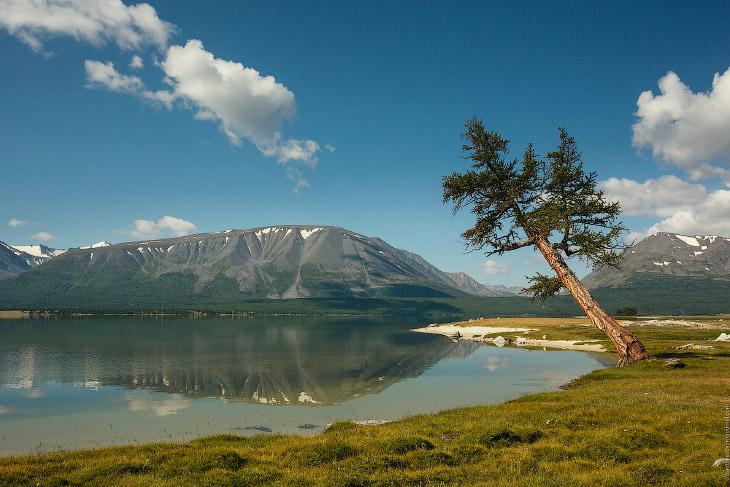 Монгольский Алтай (29 фото)
