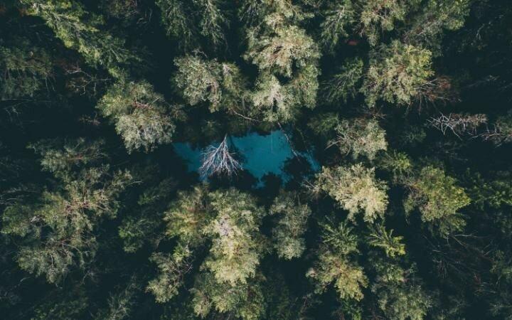 Водоём, затерянный в непроходимых лесах. «Это место называется Ingbo Källor, и находится оно в Национальном парке Оста, – поясняет Тобиас. Деревья и природа здесь совершенно нетронутые, а цвет воды меняется в зависимомсти от времени года. Этот снимок был сделан ранней весной, но со временем вода приобретёт более естественный оттенок».