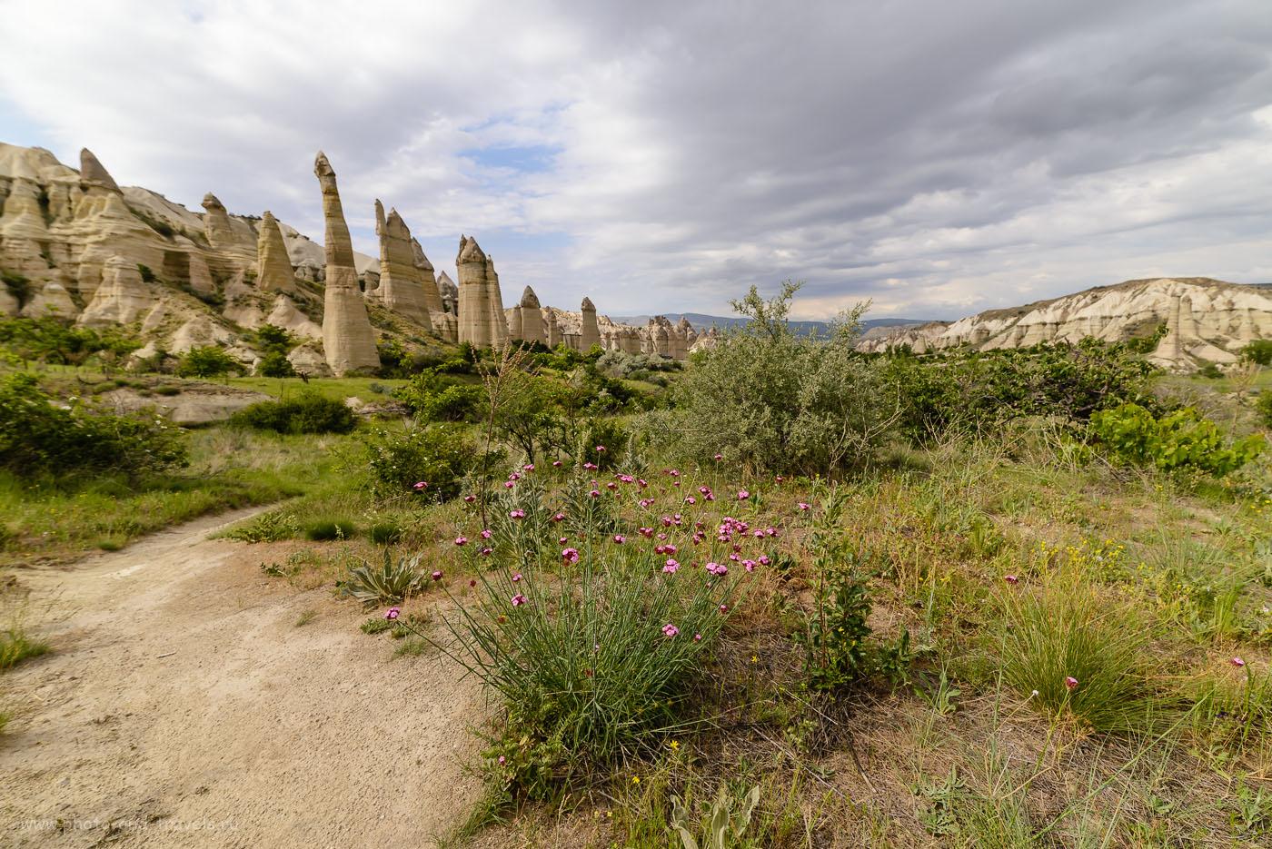 Фотография 40. Весенние цветы в Долине Любви (Love Valley) в Каппадокии. Отдохнуть в Турции можно здесь. 1/400, -1.0, 8.0, 100, 14.