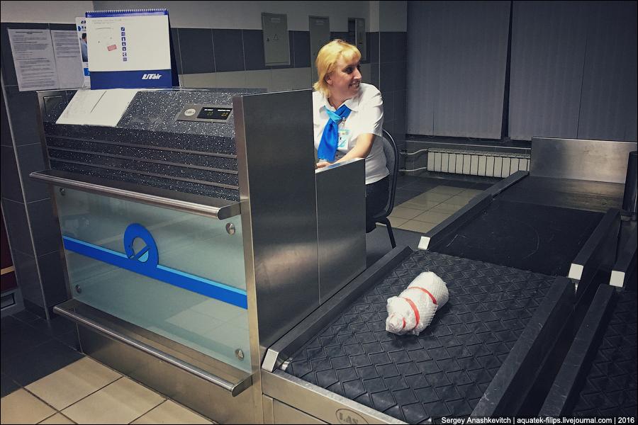 Перевозим алкоголь в самолете без чемодана