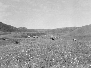 Лагерь Хасан-бек, сына Курманжан датки