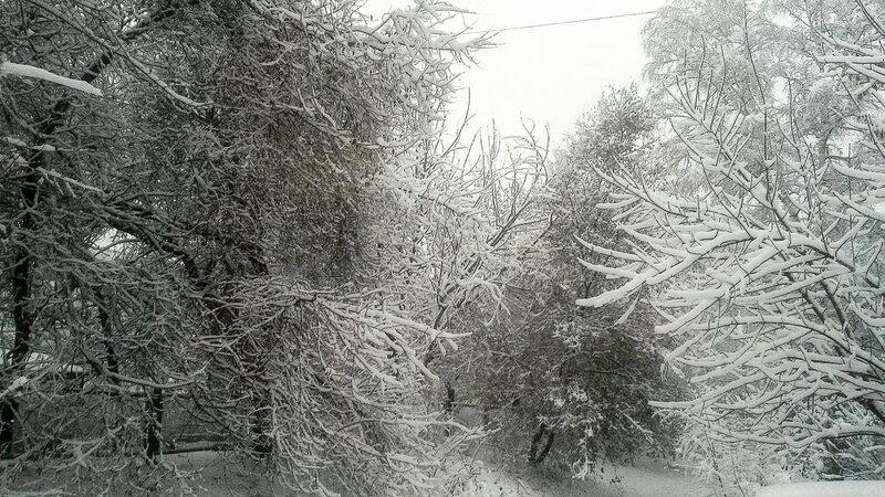 Первый снег - Зима - chronical, siberia, novokuznetsk