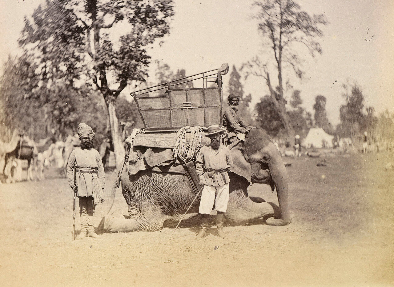 128. Чарльз Харборд,  5-го барон Саффилда на слоне