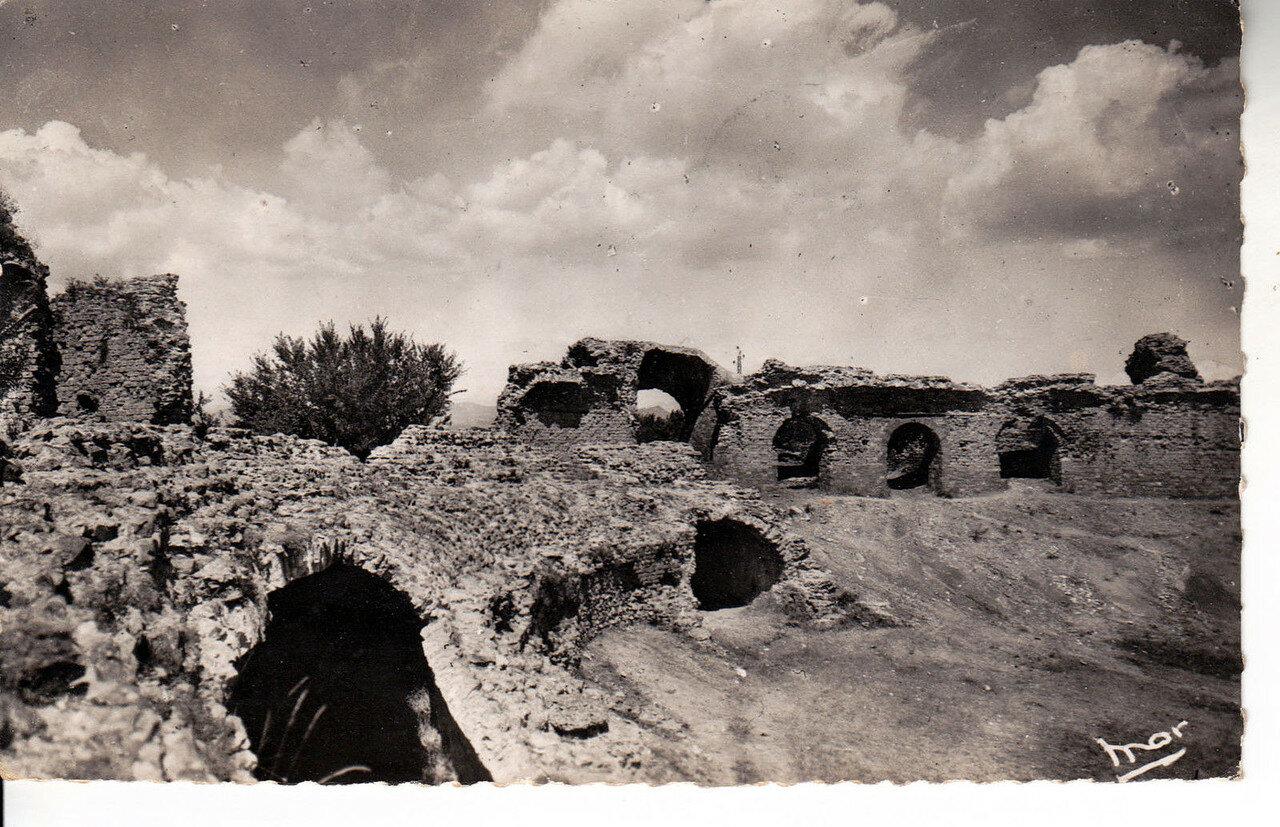 Амфитеатр. 1954