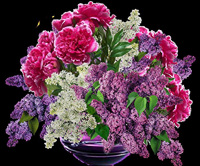Цветы картинки png