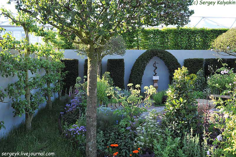 A modern Apothecary Garden (1).jpg