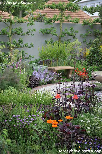 A modern Apothecary Garden (5).jpg