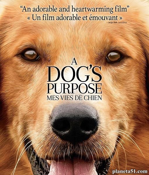 Собачья жизнь / A Dog's Purpose (2017/BDRip/HDRip)
