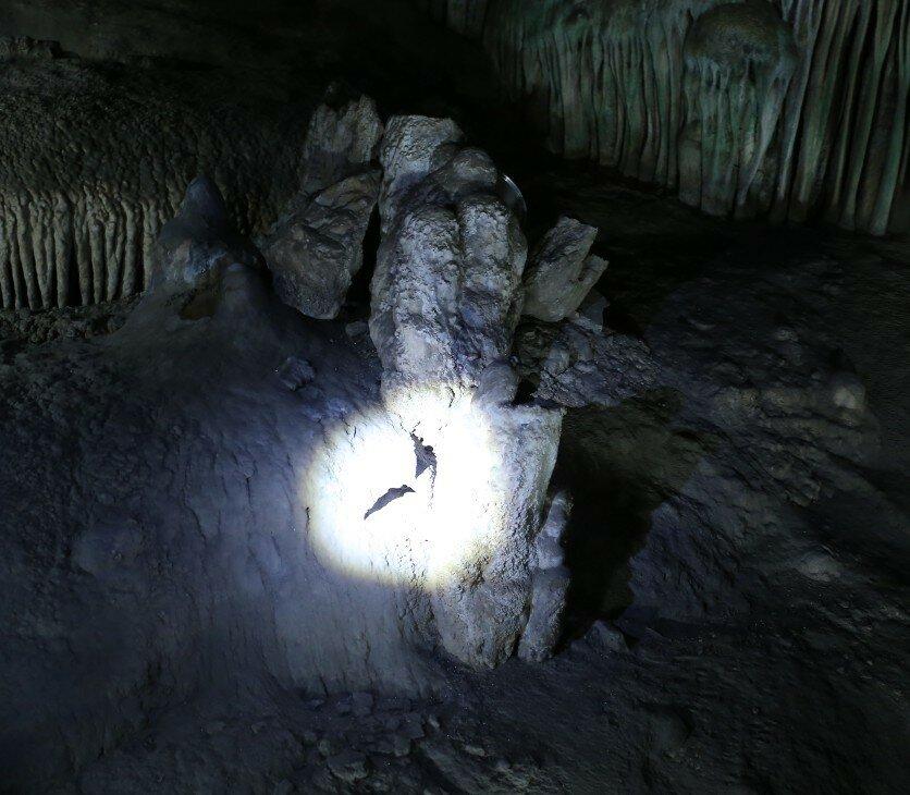 Пещеры Нерхи (Cuevas de Nerja)