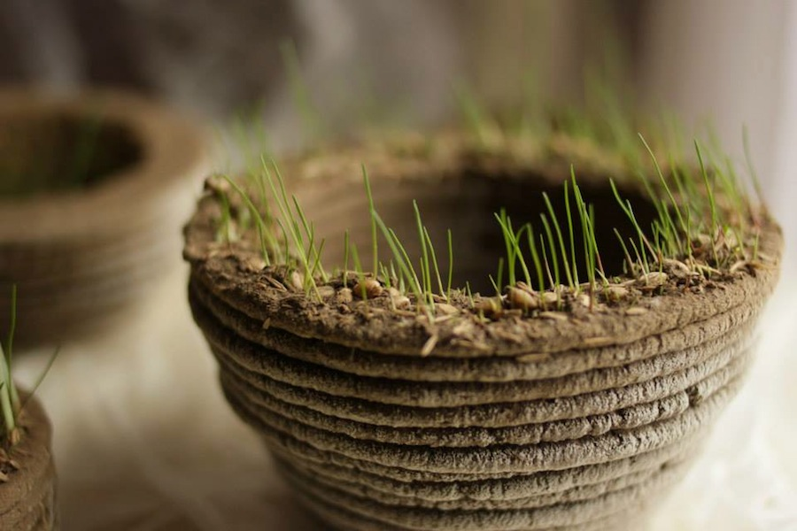 Project PrintGREEN is turning 3D printers into on-demand gardeners after designing a
