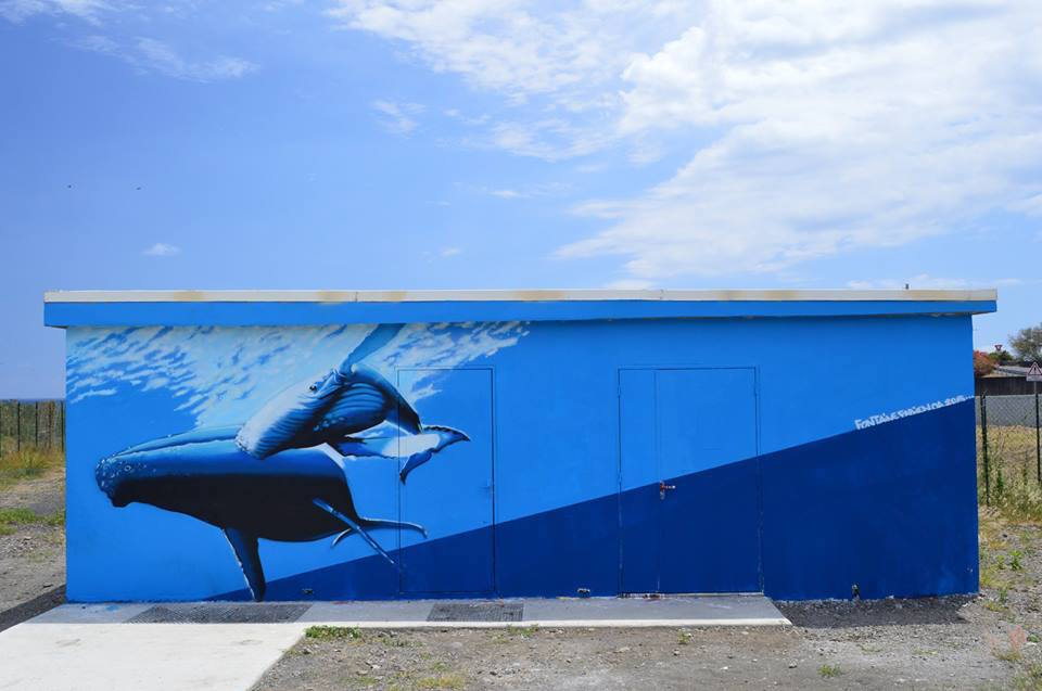 Mural by Fabien Fontaine, image provided by Street Art Reunion Island Facebook page