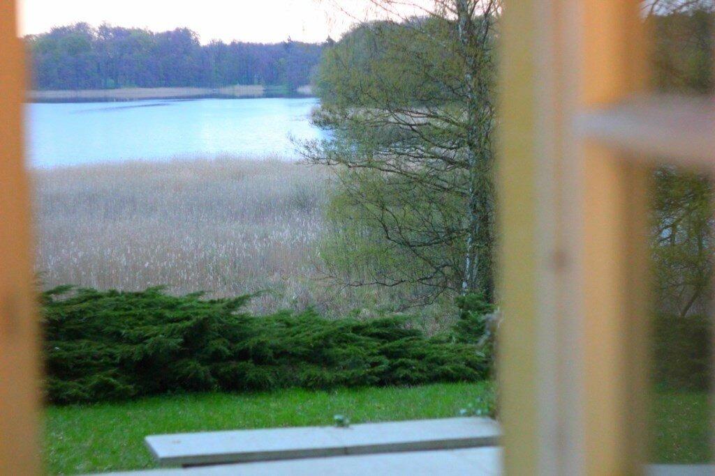 Природа за окном