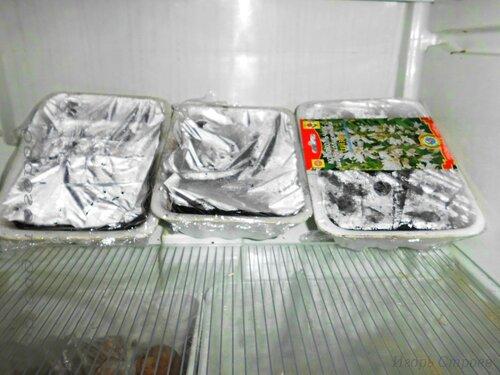 Плошки с семенами в холодильнике.