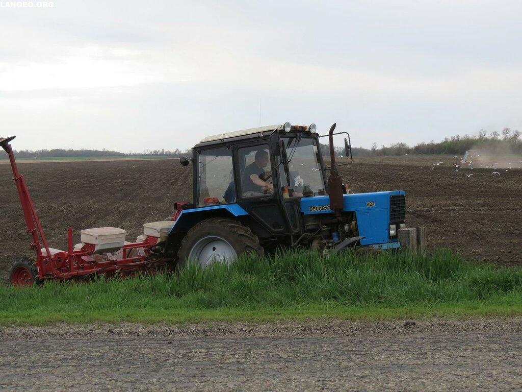 Трактор Беларус МТЗ 82.1   Купить новый трактор в Москве.