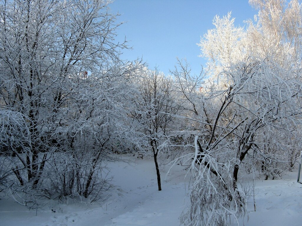 Изморозь, зима в Кировграде