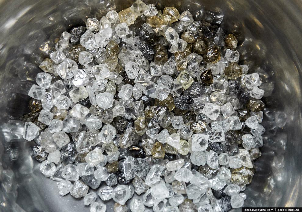 После отбора камни попадают на гранильный завод. Там алмазы становятся бриллиантами. Потери при