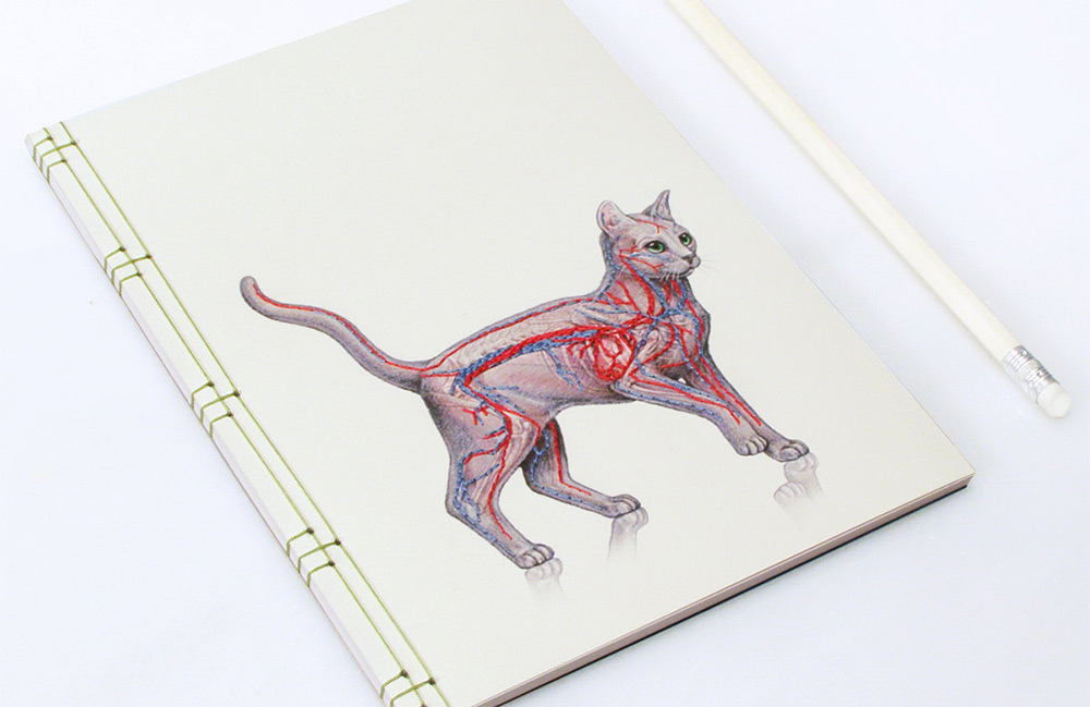 New Japanese Paper Notebooks Featuring Vintage Science Illustrations Merged with Hand-embroidery