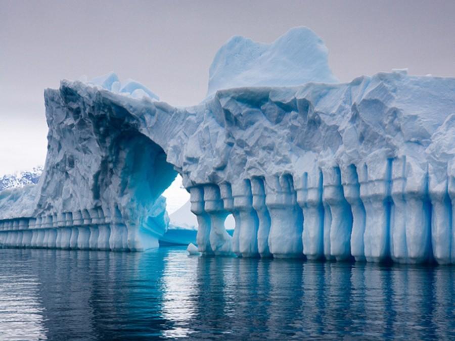3. У Антарктиды есть свой собственный домен верхнего уровня .aq, как и у других государств (Австрали