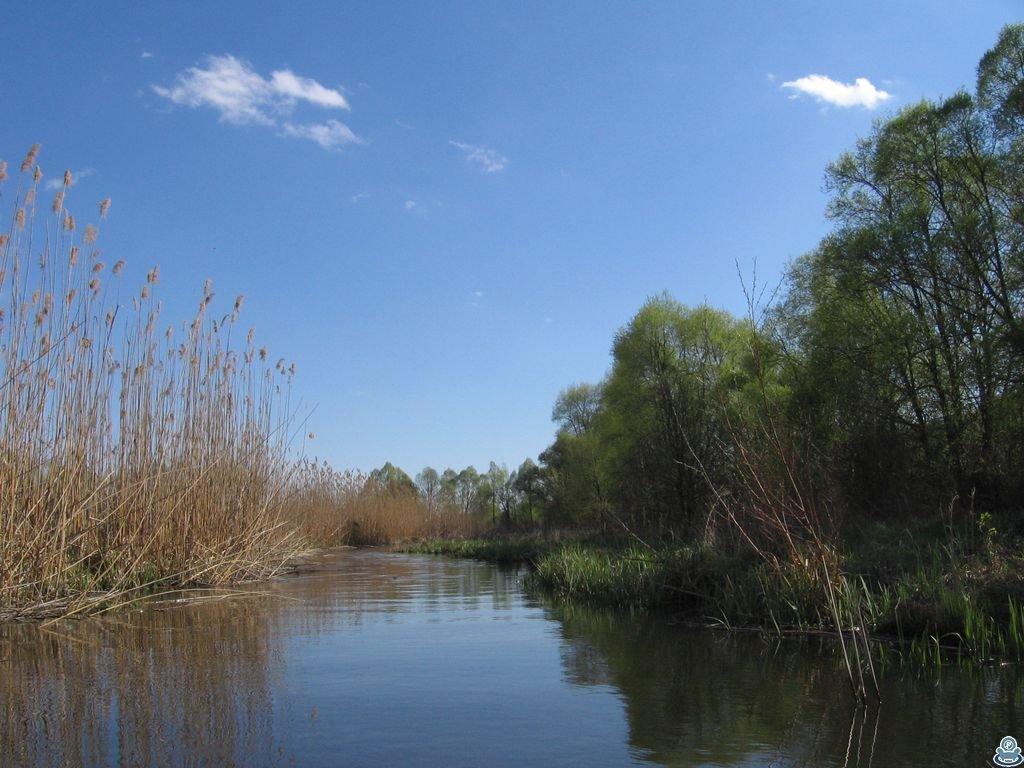 Река Боромля на подходе к Ворскле