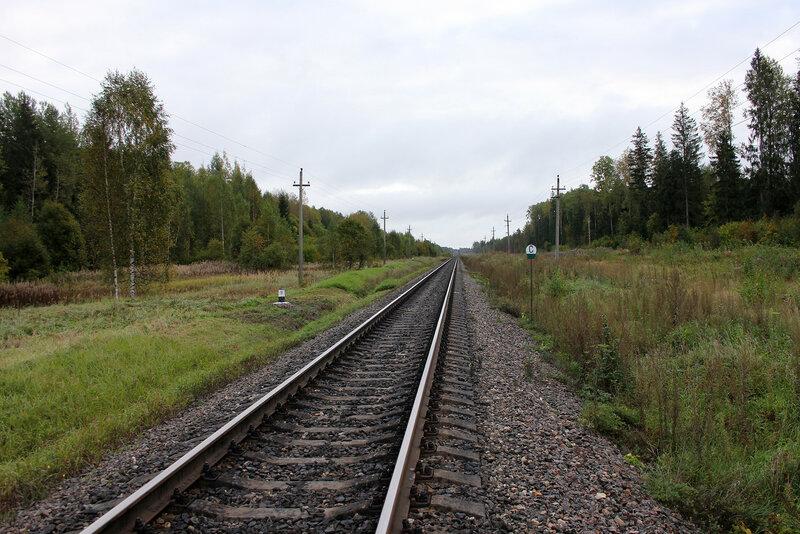Небольшой сухой участок у полотна на перегоне Земцы - Подсосенка, вид на Ржев, 357 км 8 пк