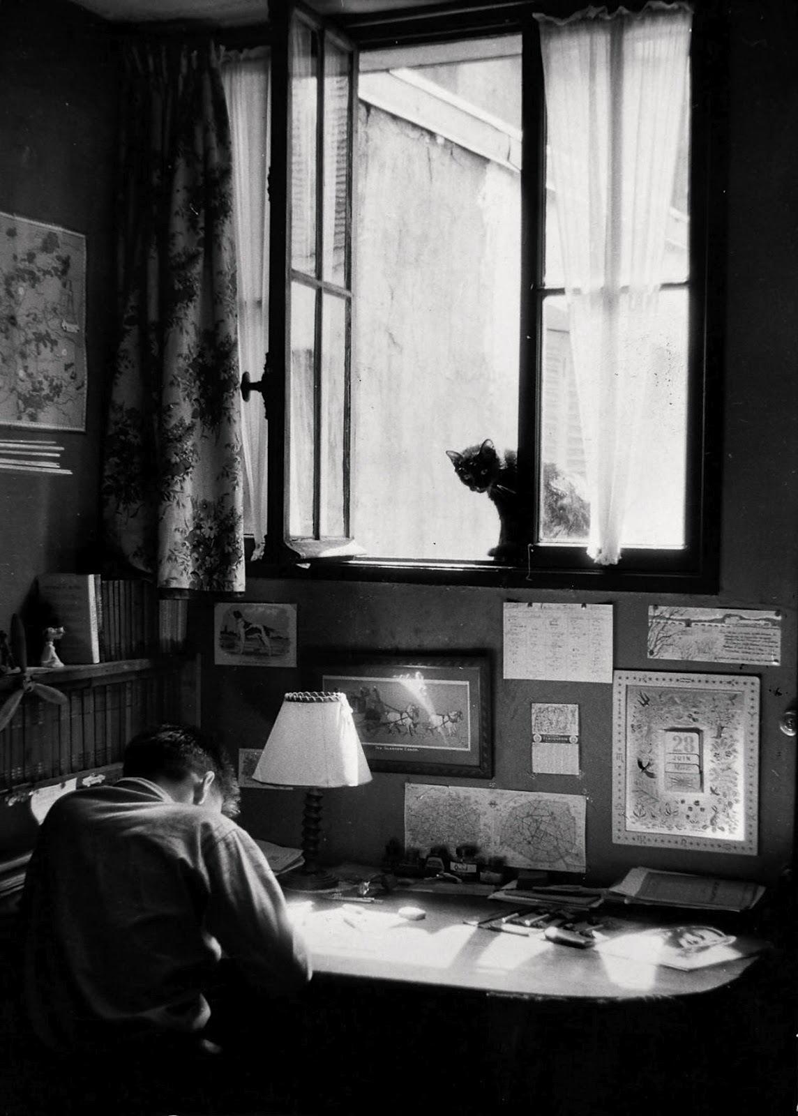 1955. Винсент и кошка. Париж