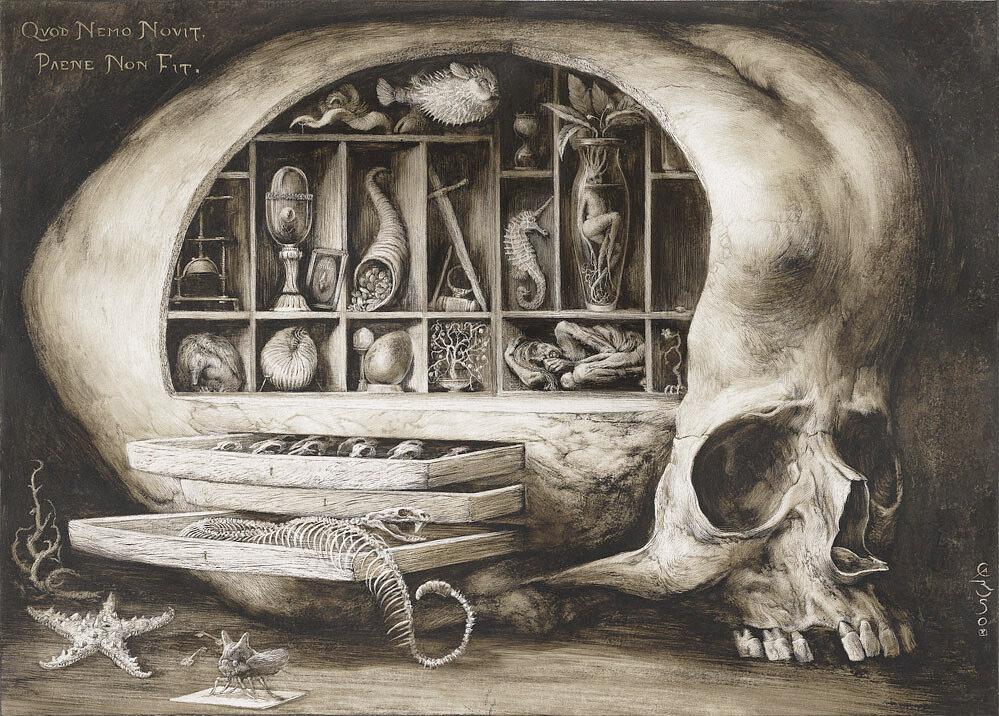 Wunderkammer, Santiago Caruso.jpg