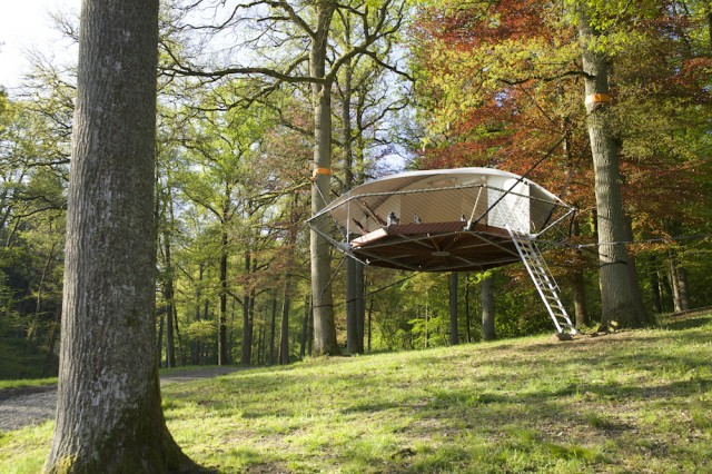 Tree house0.jpg