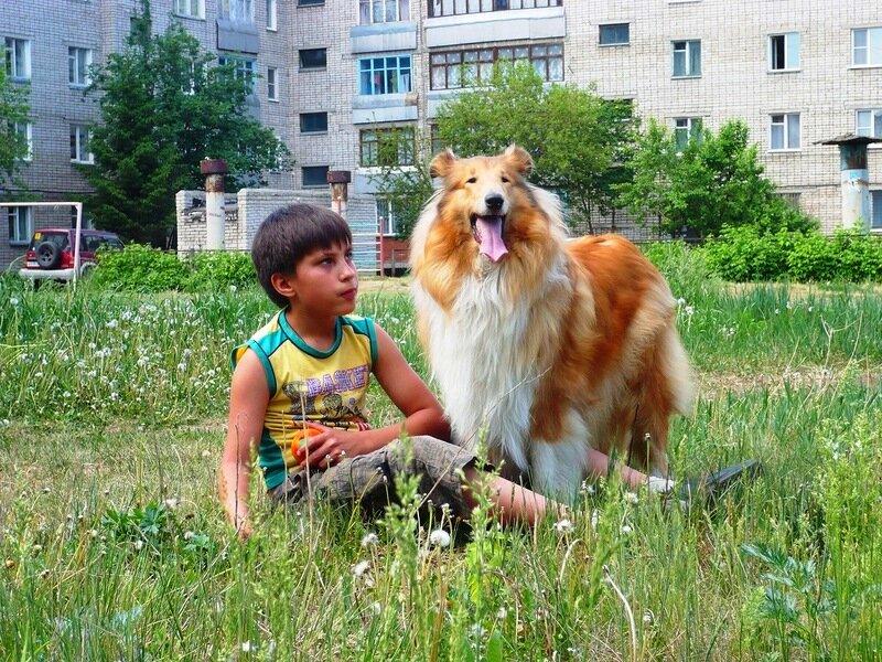 http://img-fotki.yandex.ru/get/54/134559744.4/0_765b7_86b82b72_XL.jpg