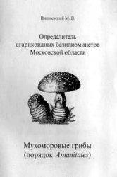 Книга Определитель агарикоидных базидиомицетов Московской области. Часть 2. Мухоморовые грибы (порядок Amanitales)