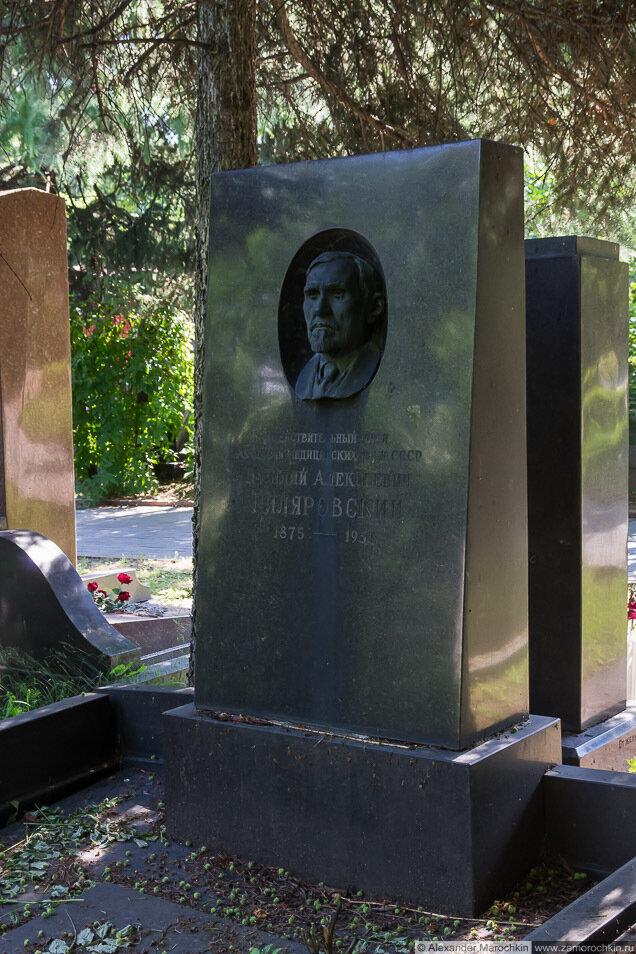 Гиляровский Василий Алексеевич, могила на Новодевичьем кладбище