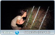Свидетельство / Evidence (2011) HDRip + DVDRip