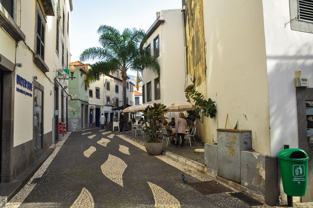 Madeira-(423).jpg