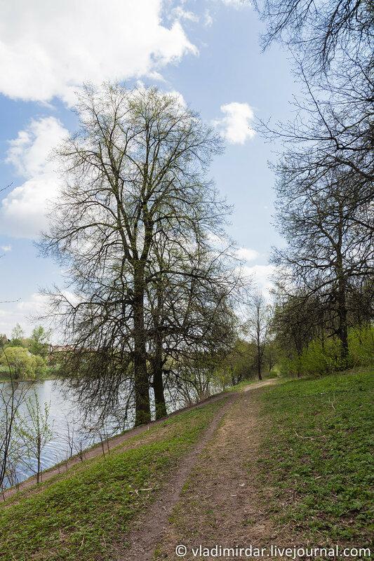 Парк усадьбы Ивановское