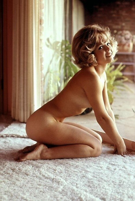 винтажные ню.Sue Williams 1965