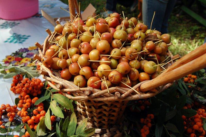 Яблочный спас в Мелихово