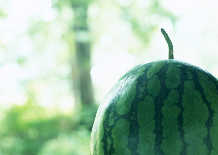 Суперягода против ультражары или как наверняка выбрать хороший арбуз! + BONUS: рецепт арбузного крюшона!
