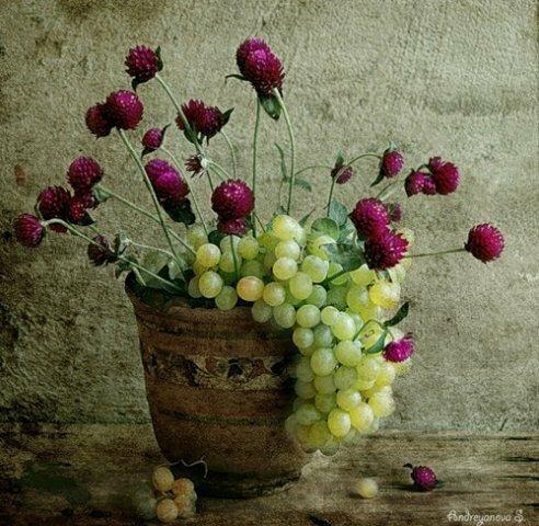 """Оригинал - Схема вышивки  """"Клевер с виноградом """" - Схемы автора  """"lyudmila-vaneeva """" - Вышивка крестом."""