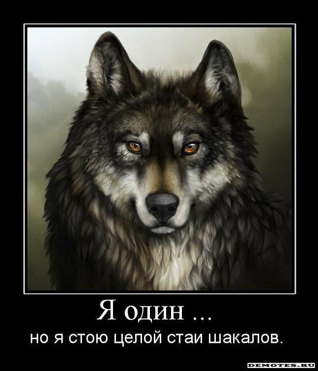 http://img-fotki.yandex.ru/get/5400/posmetnaia-el.b1/0_36fdc_9fb9acee_XL