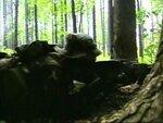 Бой в лесу.