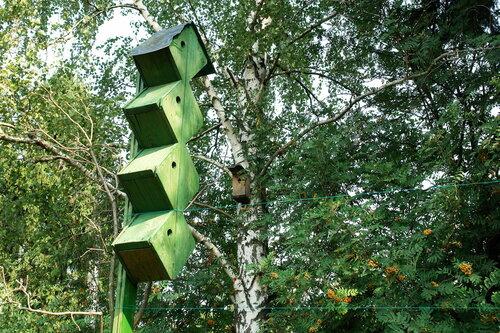 Хрущоба для птиц
